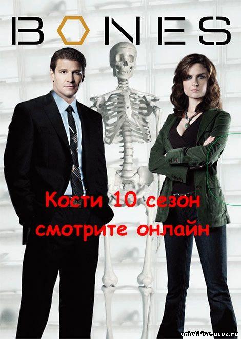 Сериал Кости 1 сезон Bones смотреть онлайн бесплатно!